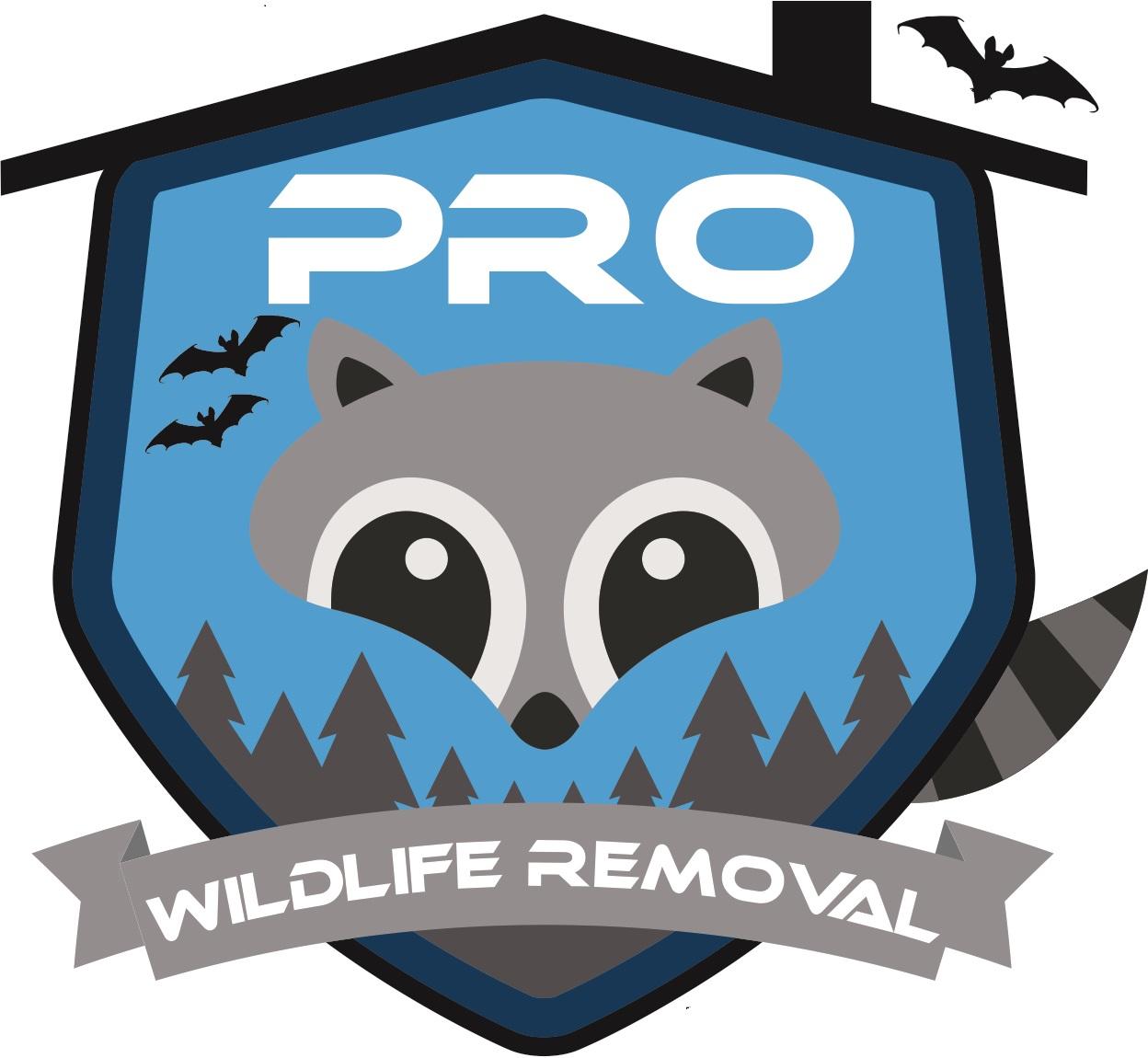 Pro Logo UPDATED