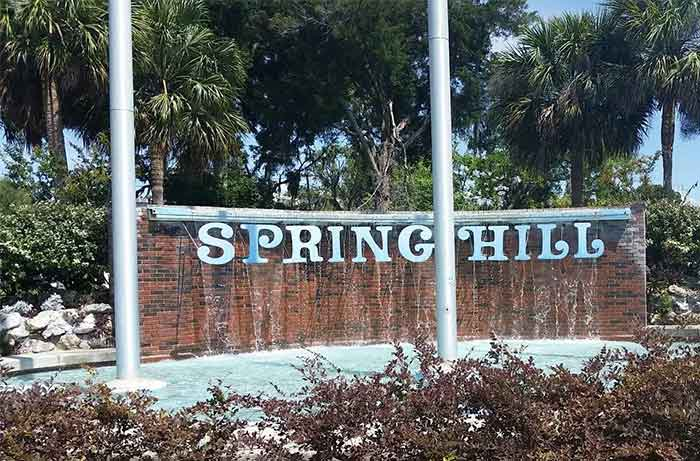 Spring Hill Florida Introduction   Pro Wildlife Removal