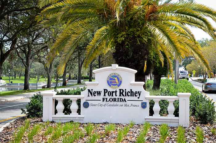 Wildlife Removal New Port Richey | Pro Wildlife Removal